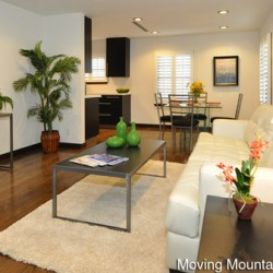 Contemporary Pasadena Home Staging Living Room
