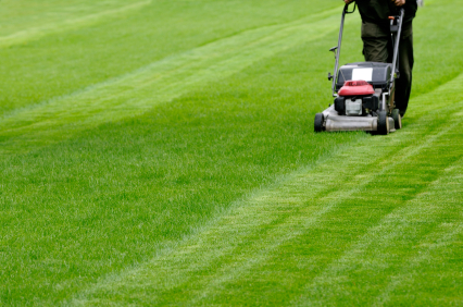 Curb Appeal mowing the lawn with stripe pattern