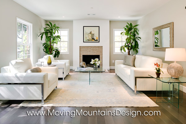 Contemporary home staging living room