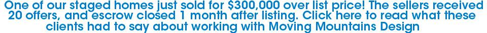 Staging Nets Seller 1500% Return