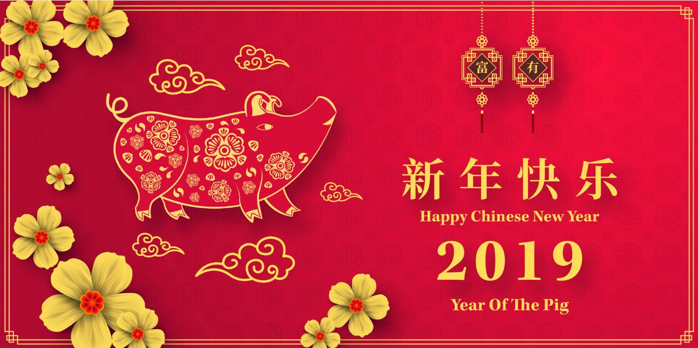 2019 Lunar New Year Pig