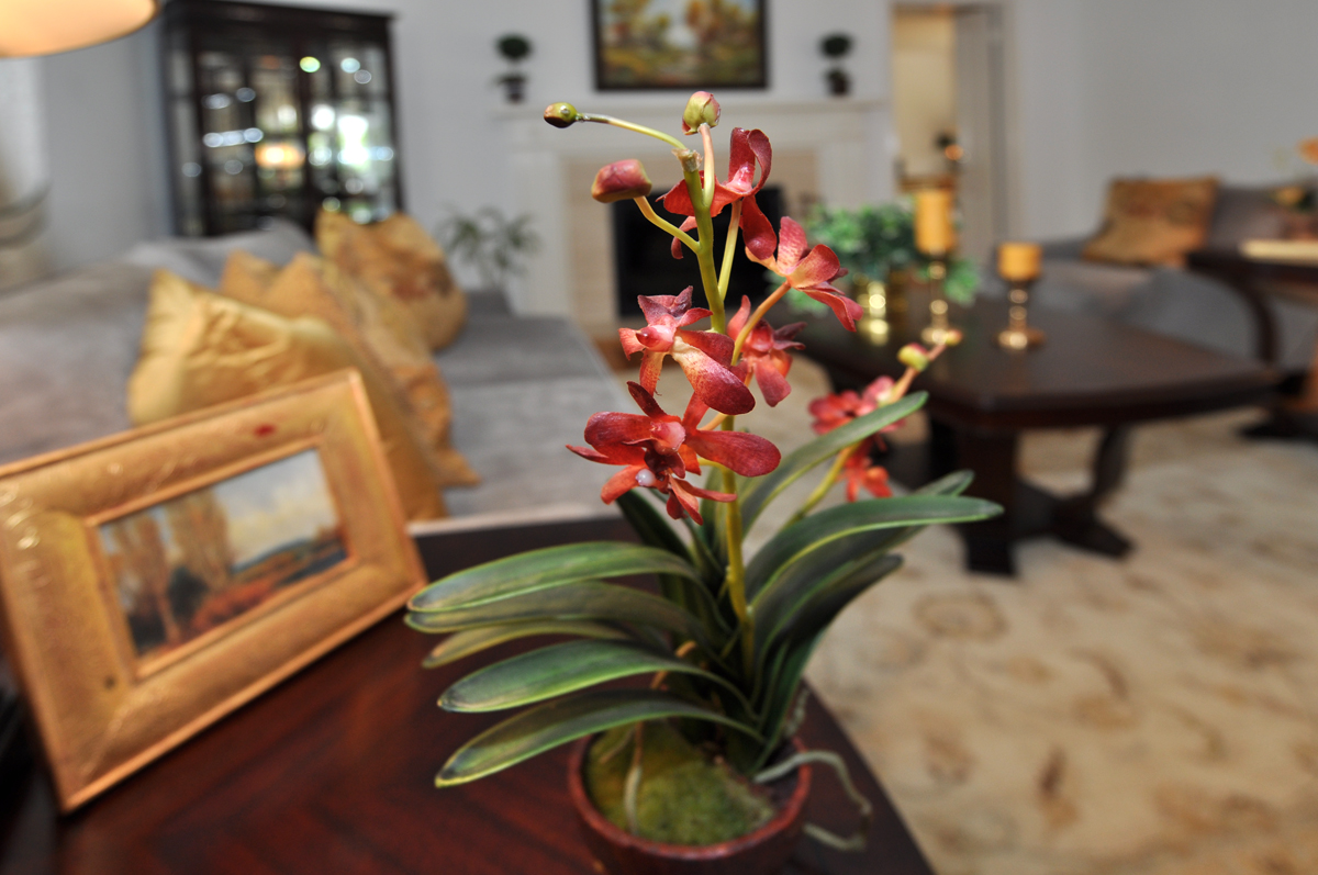 Closeup of flowers in Arcadia living room after home staging