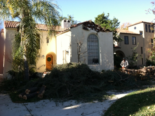 San Marino home damaged by falling tree in Pasadena Wind Storm
