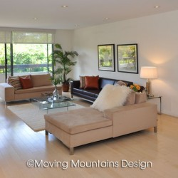 Contemporary Los Angeles Condo Home Staging Livingroom