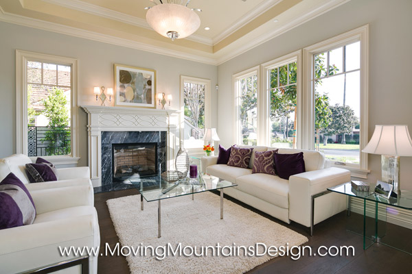 Contemporary Luxury Home Staging Arcadia Living Room